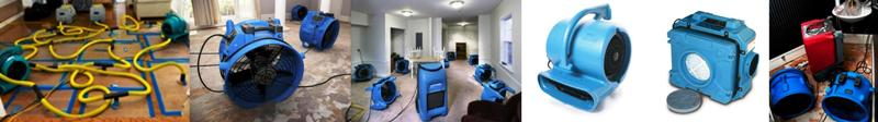 Water Damage Mold Treatment